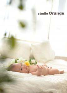 花冠 赤ちゃん